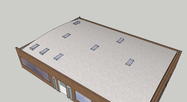 Hemp Home Roof Design Option with Natural Daylighting from Skylights