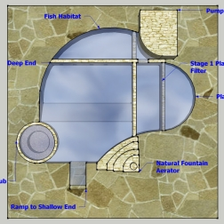 Top View Natural Pool Design with Fish Habitat